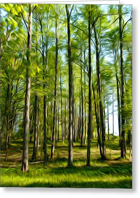 Tn Mixed Media Greeting Cards - Forest for Ghostly Spirits Greeting Card by Shelle Ettelson