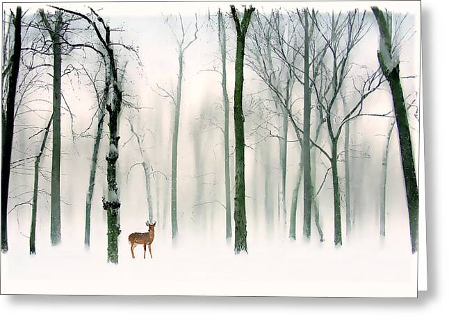 Winter Trees Greeting Cards - Forest Friend Greeting Card by Jessica Jenney