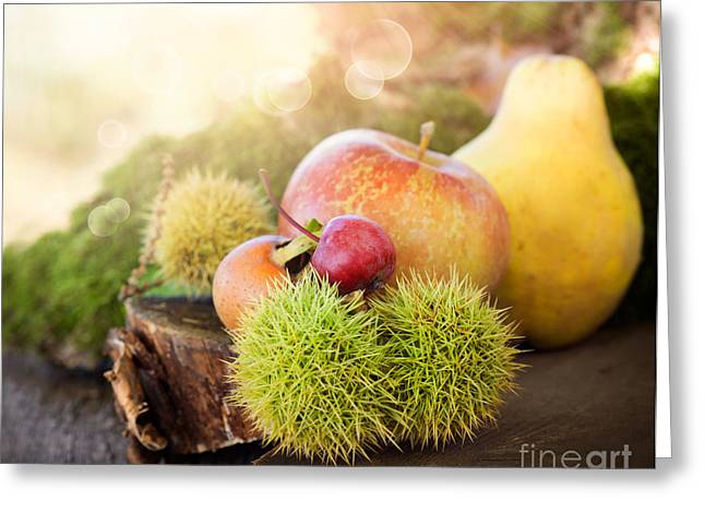 Mythja Greeting Cards - Forest fruit Greeting Card by Mythja  Photography