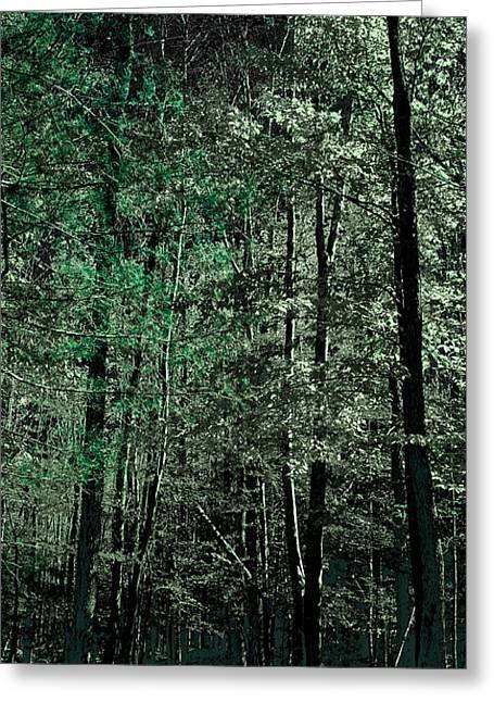 Surreal Landscape Greeting Cards - Forest Green Greeting Card by David Patterson