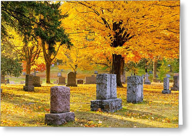 Autumn at Forest Hill Greeting Card by Mary Amerman