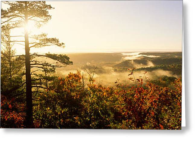 Upper Peninsula Greeting Cards - Forest In Autumn At Sunset, Ottawa Greeting Card by Panoramic Images