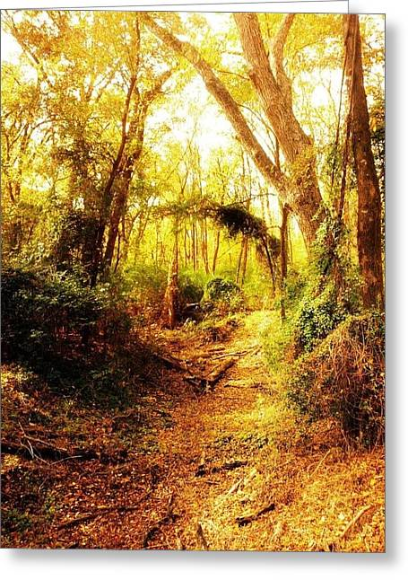 Kristin Smith Greeting Cards - Forest Greeting Card by Kristin Smith