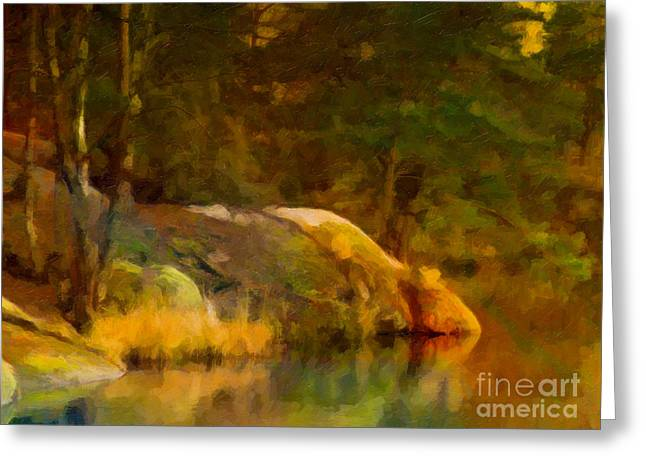 Photoart Greeting Cards - Forest Lake Greeting Card by Lutz Baar