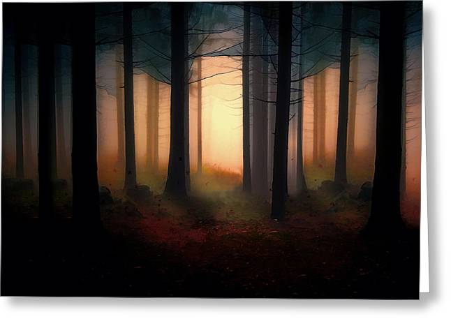 Autumn Prints Greeting Cards - Forest Light Greeting Card by Shanina Conway