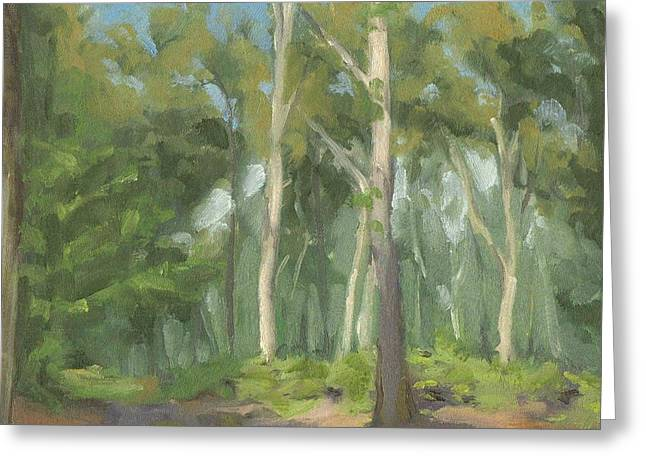 Fontainebleau Forest Greeting Cards - Forest near Ury - Foret pres dUry Greeting Card by David Ormond
