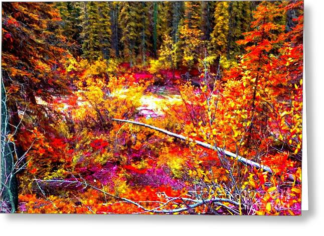 Pine Needles Mixed Media Greeting Cards - Forest of Colors Greeting Card by John Kreiter