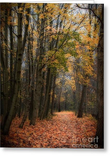 Recently Sold -  - Dream Scape Greeting Cards - Forest path in autumn Greeting Card by Hugo Bussen