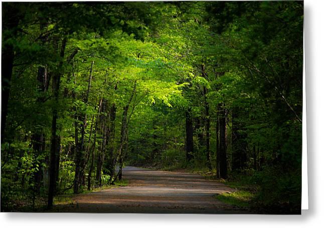 Jogging Greeting Cards - Forest Path Greeting Card by Parker Cunningham