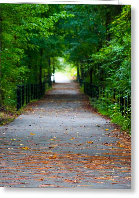 Green Foliage Greeting Cards - Forest Path Greeting Card by Shelby  Young