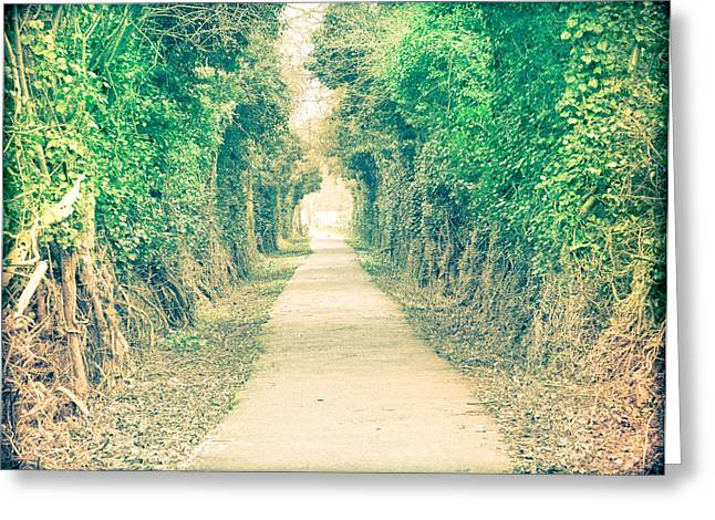 Layer Greeting Cards - Forest path Greeting Card by Tom Gowanlock