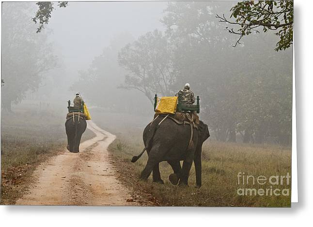 Thick Fog Greeting Cards - Forest Rangers In Bandhavgarh National Greeting Card by William H. Mullins