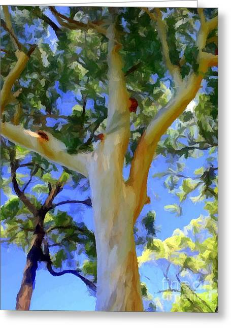Forest Red Gum Greeting Card by Chris Butler