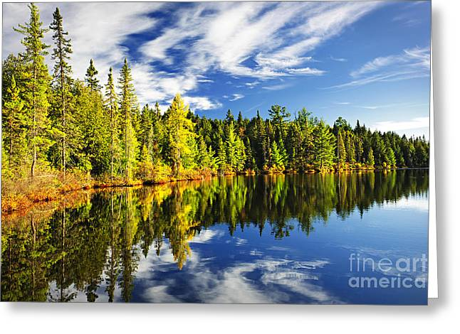 Pines Greeting Cards - Forest reflecting in lake Greeting Card by Elena Elisseeva