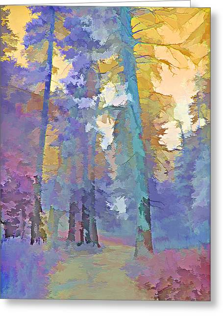 Country Dirt Roads Mixed Media Greeting Cards - Forest Road - Color Splash 3 Greeting Card by Steve Ohlsen