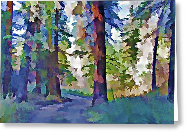 Country Dirt Roads Mixed Media Greeting Cards - Forest Road - Color Splash Greeting Card by Steve Ohlsen