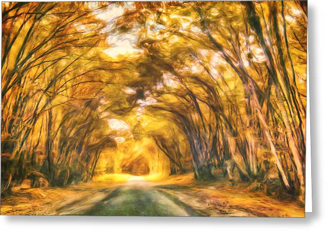 Autumn Road Greeting Cards - Forest Road Greeting Card by Joel Olives