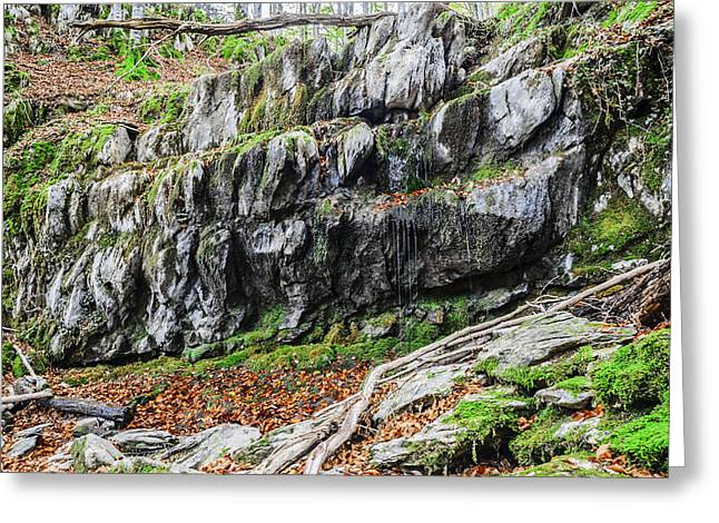Green Day Greeting Cards - Forest rocks Greeting Card by Tilyo Rusev