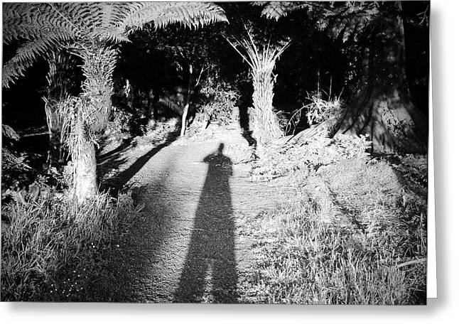 Self-portrait Greeting Cards - Forest shadow Greeting Card by Les Cunliffe