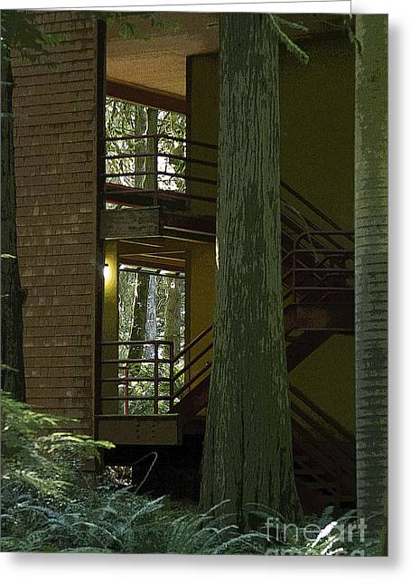 Flight Of Stairs Greeting Cards - Forest Stairway Greeting Card by Jeanette French