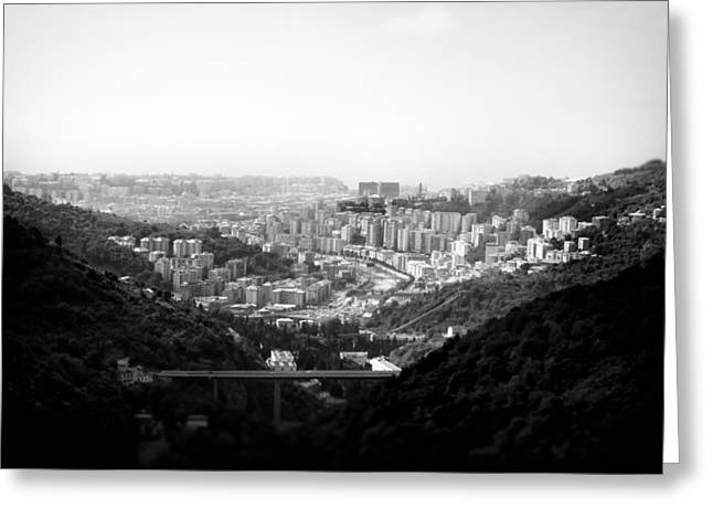 Downtown Genoa Greeting Cards - Forest view.. Greeting Card by A Rey