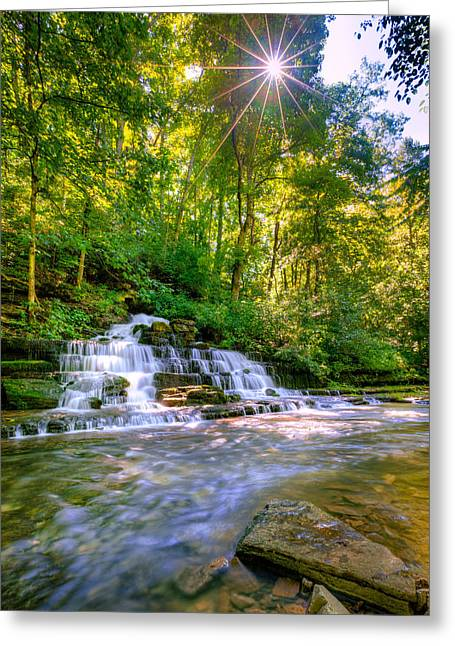 Beautiful Creek Greeting Cards - Forest waterfall Greeting Card by Alexey Stiop