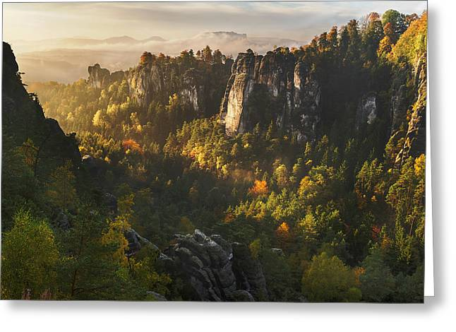 Forest Whispers Greeting Card by Karsten Wrobel