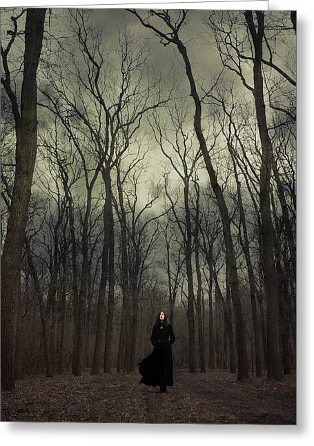 Bare Trees Greeting Cards - Forest witch Greeting Card by Wojciech Zwolinski