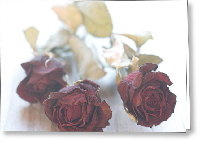 Over-exposed Greeting Cards - Forever Greeting Card by Constance Fein Harding