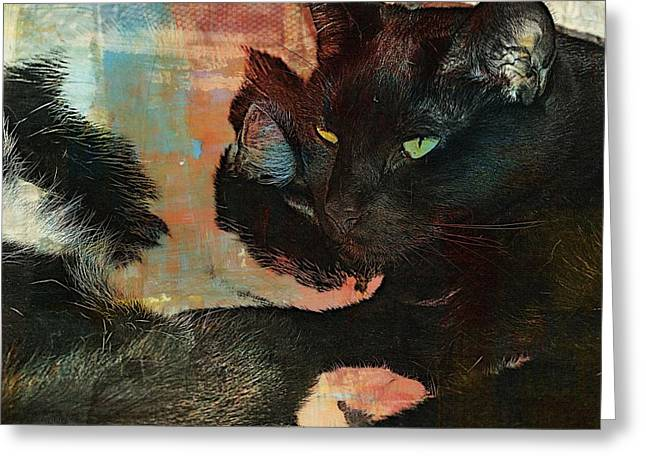 Litter Mates Photographs Greeting Cards - Forever Friends Greeting Card by Kathy Barney