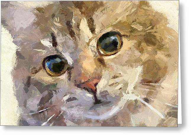 House Pet Digital Art Greeting Cards - Forever Friends Greeting Card by Yury Malkov