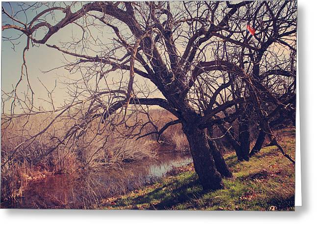 Bare Oak Tree Greeting Cards - Forever in My Heart Greeting Card by Laurie Search