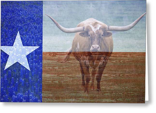 Forever Texas Greeting Card by Paul Huchton