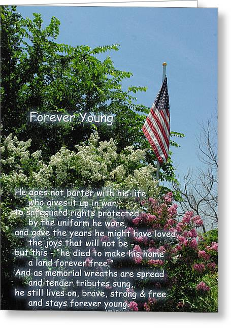 Forever Young Greeting Cards - Forever Young Memorial Flag Greeting Card by Robyn Stacey