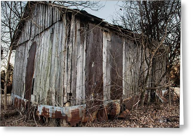 Metal Sheet Greeting Cards - Forgotten Barn 3  Greeting Card by Jamie Heeke