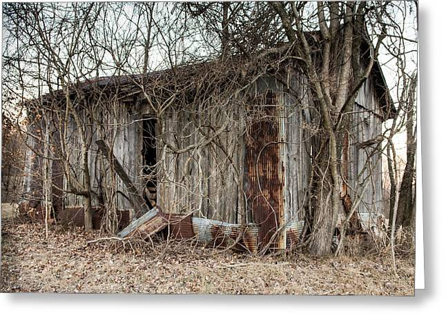 Metal Sheet Greeting Cards - Forgotten Barn 4 Greeting Card by Jamie Heeke