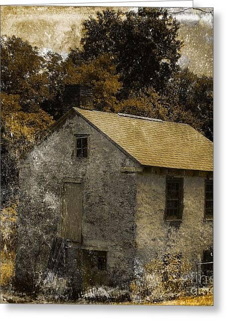 Livelihood Greeting Cards - Forgotten Barn Greeting Card by Marcia Lee Jones