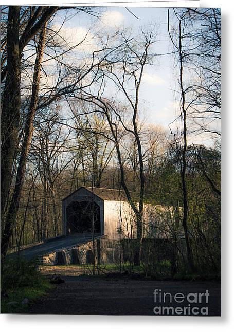 Covered Bridge Greeting Cards - Forgotten Bridges Greeting Card by Tim Kravel
