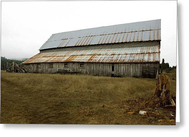 Outbuildings Greeting Cards - Forgotten Farmstead Greeting Card by Kandy Hurley