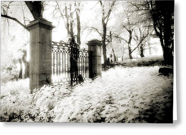 Pearly Gates Greeting Cards - Forgotten Gate Greeting Card by Thomas Shanahan