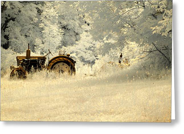 Ghostly Greeting Cards - Forgotten Harvest Greeting Card by Luke Moore