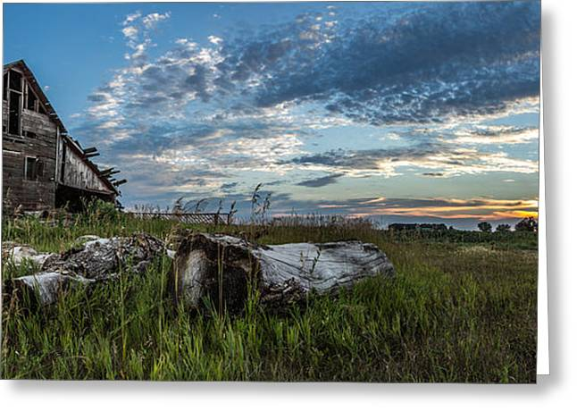 Iowa Greeting Cards - Forgotten I Greeting Card by Aaron J Groen