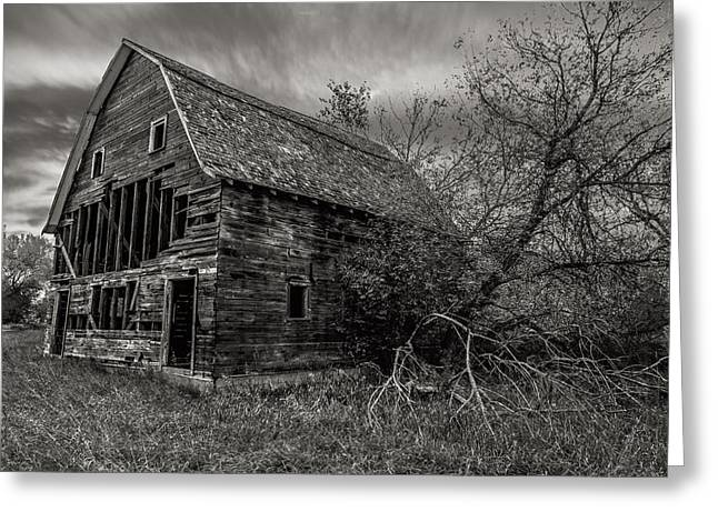 Forget Greeting Cards - Forgotten II Greeting Card by Aaron J Groen