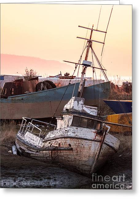 Fishing Boats Greeting Cards - Forgotten in Homer Greeting Card by William Fields