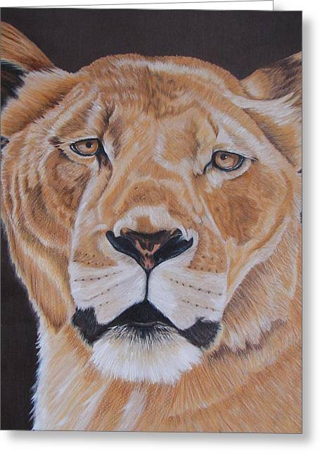 Lioness Drawings Greeting Cards - Forgotten queen Greeting Card by Lea Sutton