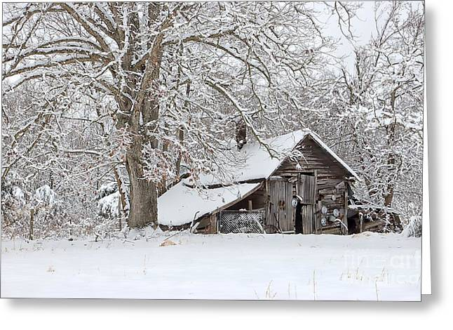Old Barns Greeting Cards - Forgotten Winter Barn Greeting Card by Benanne Stiens