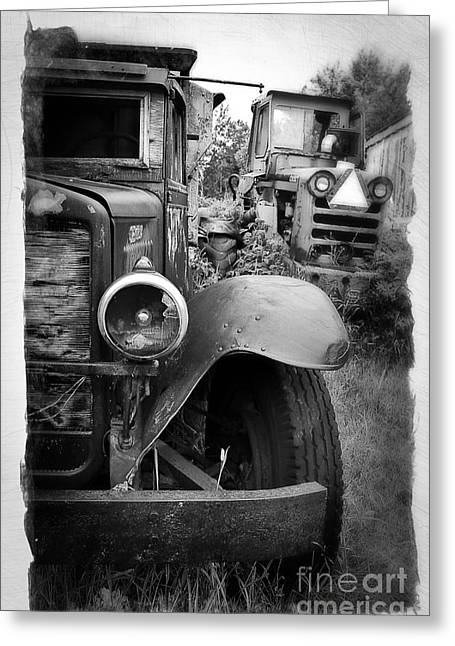 Old Truck Photography Greeting Cards - Forgotten Workers Greeting Card by Perry Webster