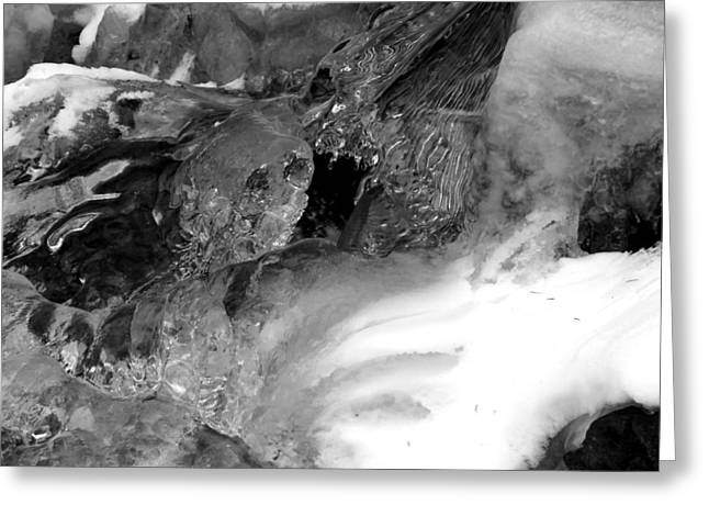 Formed Ice Skull Greeting Card by Thomas Samida