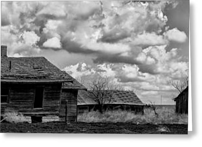 Recently Sold -  - Barn Yard Greeting Cards - Forsaken Greeting Card by Betty Depee