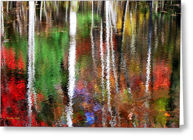 Nature Abstracts Greeting Cards - Forsaken Greeting Card by Christina Rollo